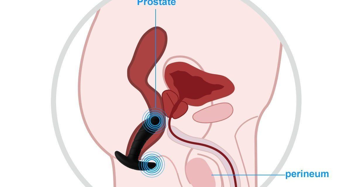 Mini Vibromasseur Stimulateur Prostate Anal Périnée Plug Anal